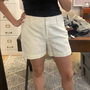 "Vince Camuto White Shorts- 5"" inseam"